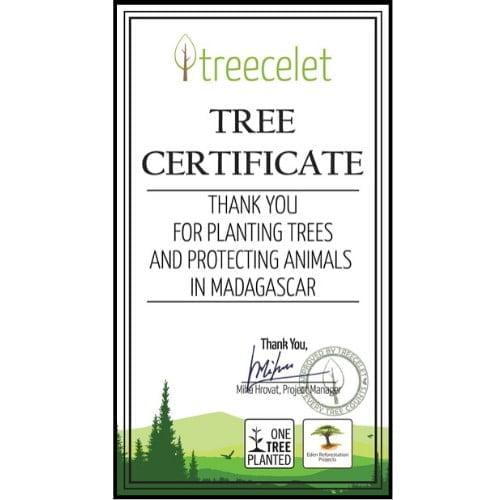 Madagascar Certificate